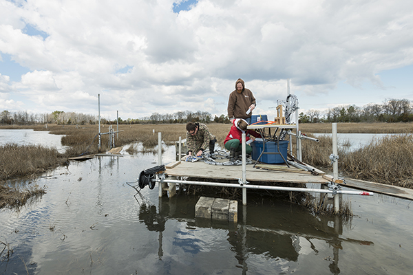 Dr. Jack Puleo is conducting research with several graduate and undergraduate students in Brockonbridge Marsh. His work involves tracking the flow of water through the marsh in extensive detail over a period of several weeks. Pictured: Graduate student Aline Pieterse and PhD student Thijs Lanckriet and Dr. Jack Puleo
