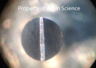 Microscopic Eclipse