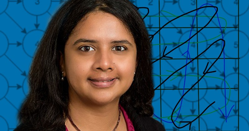 Sunita Chandrasekaran is an assistant professor in the Department of Computer and Information Sciences.