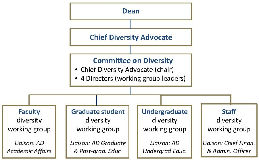 Organizational chart showing the reporting structure for the Chief Diversity Officer, Committees and Working Groups
