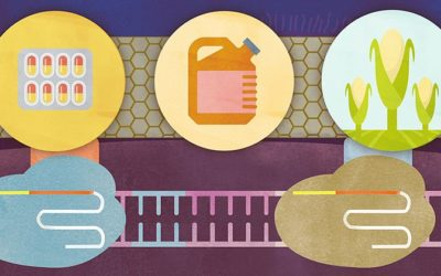 New Twist on CRISPR Technology