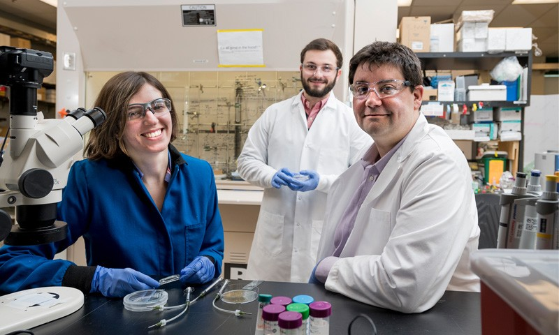 UD professor Jason Gleghorn (right) and doctoral students Jasmine Shirazi (left) and Michael Donzanti (center)