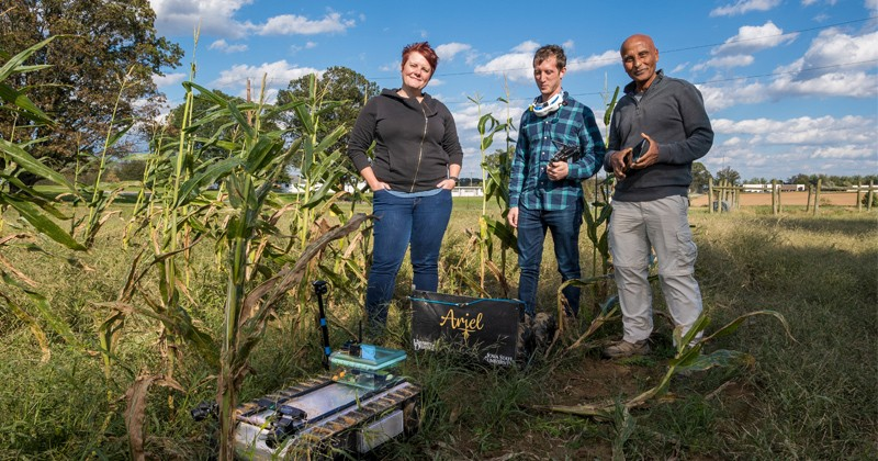 This photograph was taken before the coronavirus (COVID-19) pandemic forced the need for social distancing and the wearing of masks. UD researchers are using robotics to study the roots of corn plants. From left to right are Erin Sparks, assistant professor of plant and soil sciences; Adam Stager, doctoral student of mechanical engineering; and Teclemariam (Tecle) Weldekidan, research scientist in plant and soil sciences.