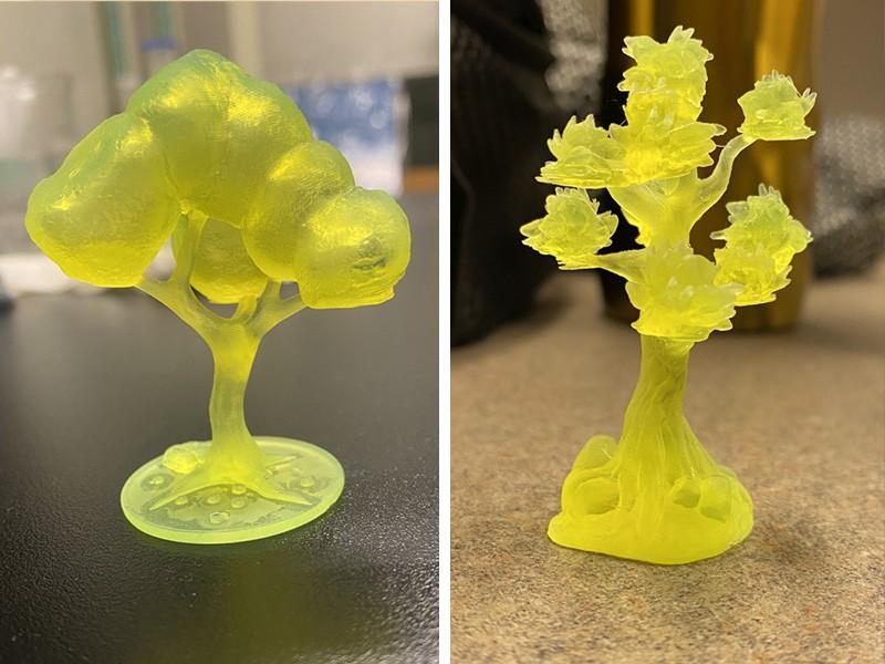 3D printed plant models