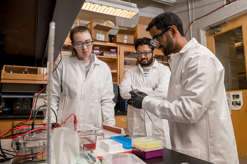 Aditya Kunjapur, a new assistant professor in the Department of Chemical and Biomolecular Engineering, has been named to the Johns Hopkins Center for Health Security's Emerging Leaders in Biosecurity Initiative fellowship program in 2019.  He works with graduate students Sabyasachi (Sunny) Sen and Morgan Sulzbach in his lab in Colburn using the latest pipette techniques with gels.