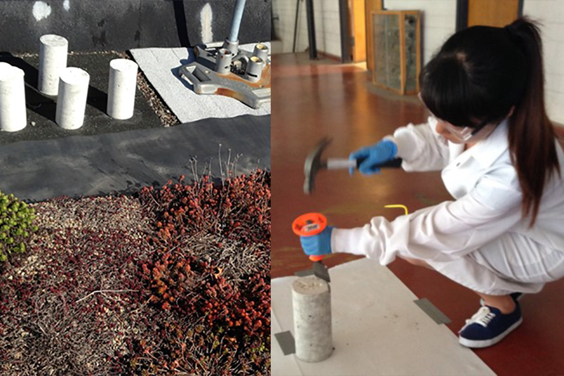 microbiology-samples in concrete